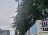 인천 미추홀구 연학초등학교 LED보안등